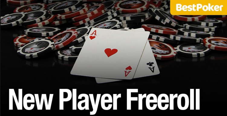 New Player Freeroll