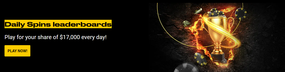 Bwin SPINS Leaderboards